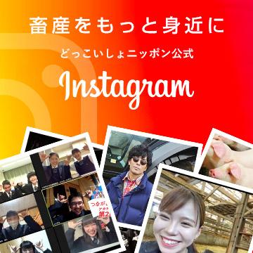 どっこいしょニッポン公式Instagram