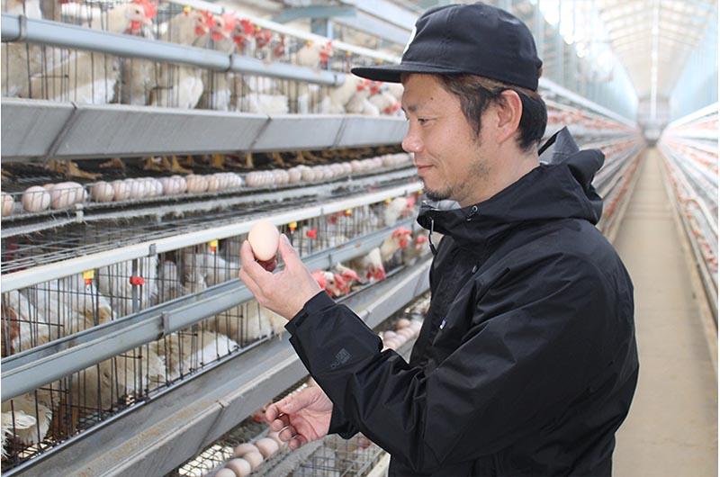 北坂養鶏場の北坂さん