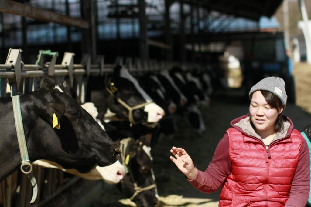 木目澤牧場の牛舎にいる牛と初実さん