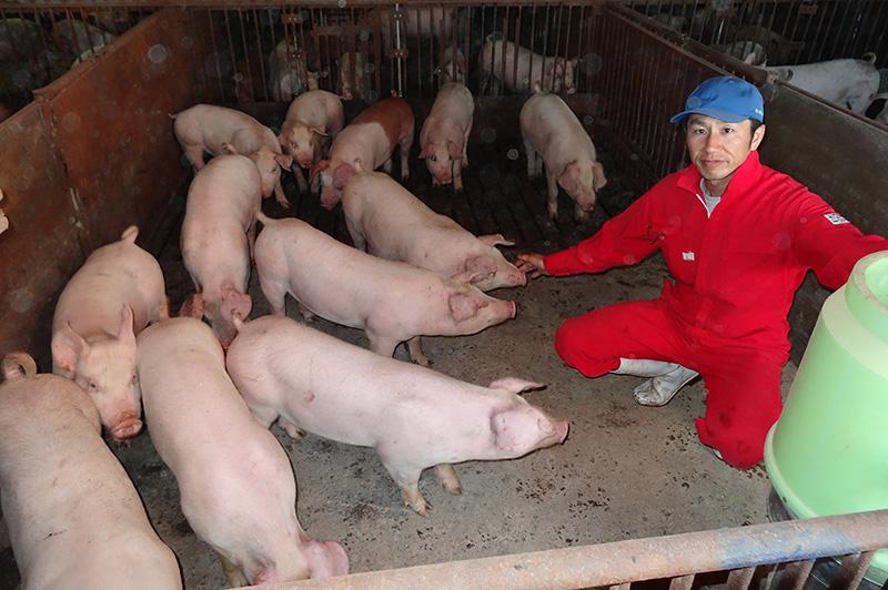 山形ピッグファームの阿部さんと豚