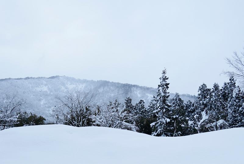 新潟県新潟市南区の冬景色