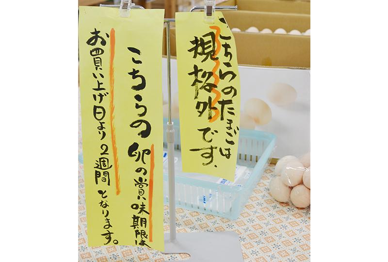 規格外の卵の詰め放題
