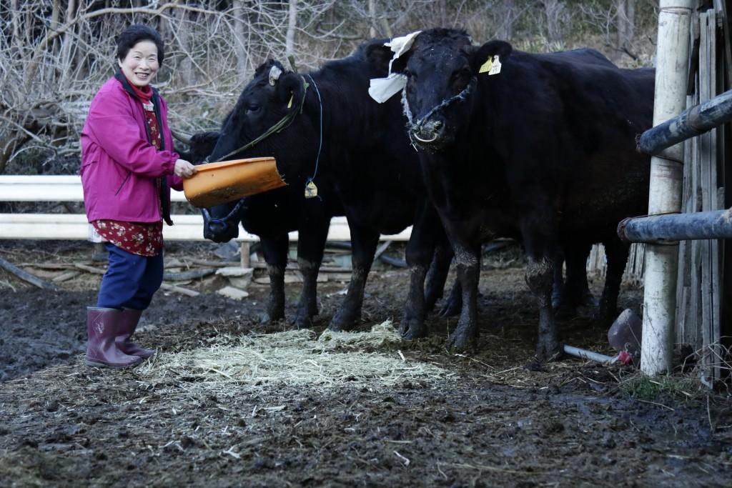 国馬さんと牛
