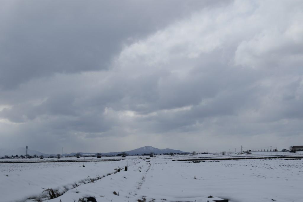 広大な雪景色
