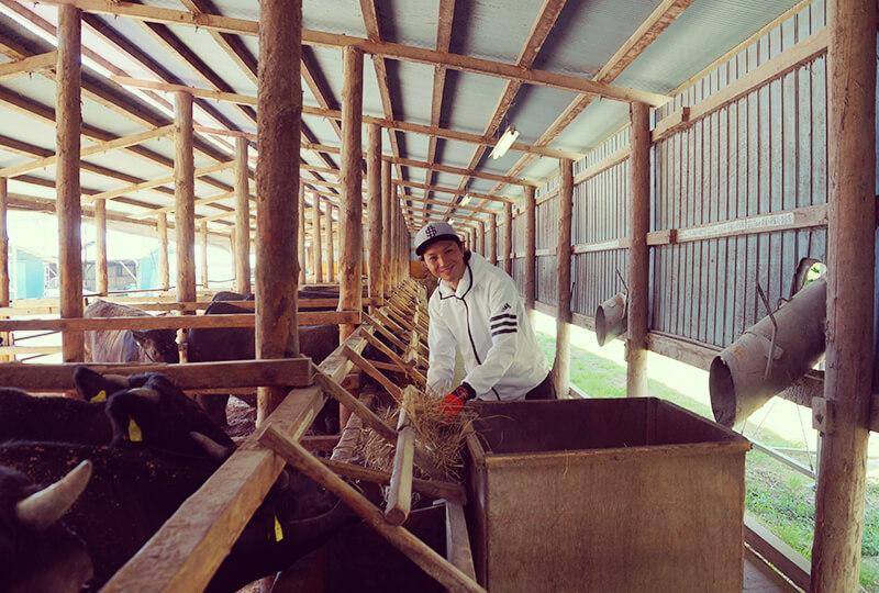 川村ファームの牛舎にいる川村さん