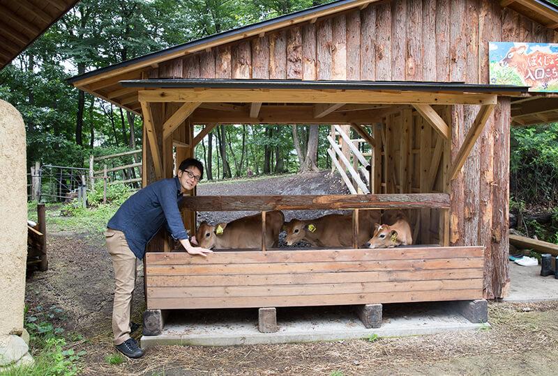 森林ノ牧場の子牛小屋