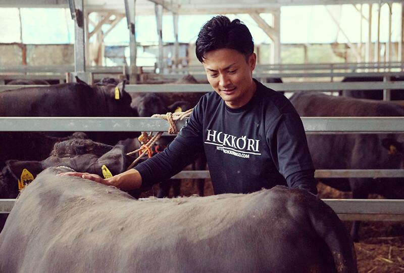 牛をブラッシングする加藤さん