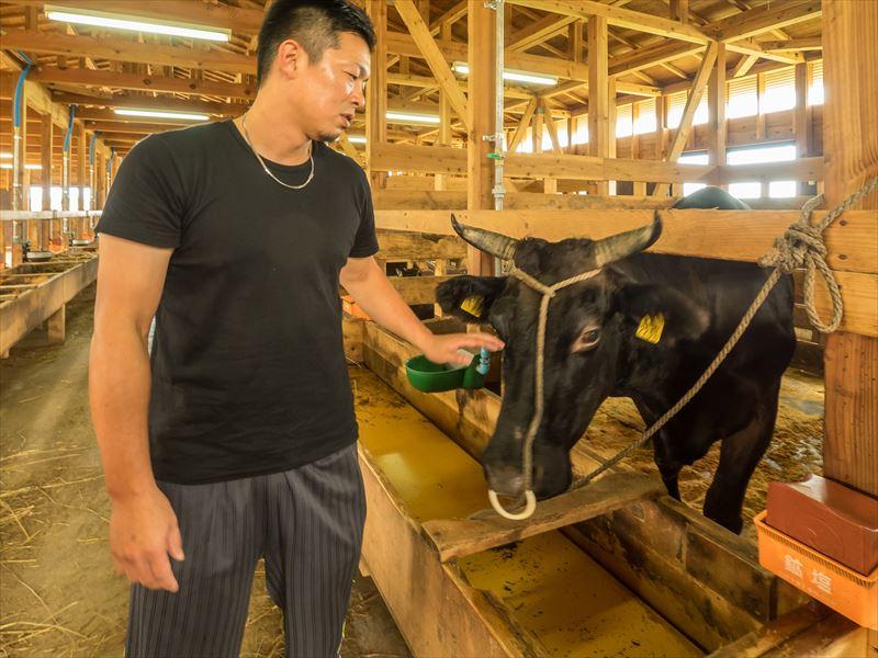 株式会社KANEHOの南隼人さんと牛