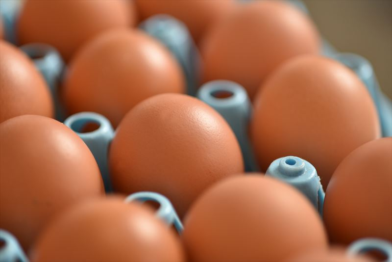 倉持産業株式会社の卵