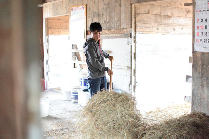牧草をまとめる畑端俊樹さん