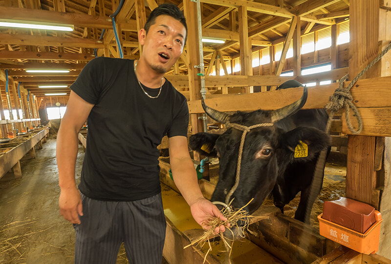 KANEHOの隼人さんと牛