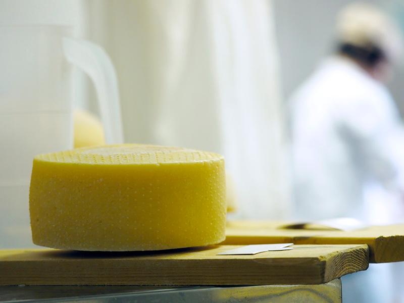 工房レティエのチーズ