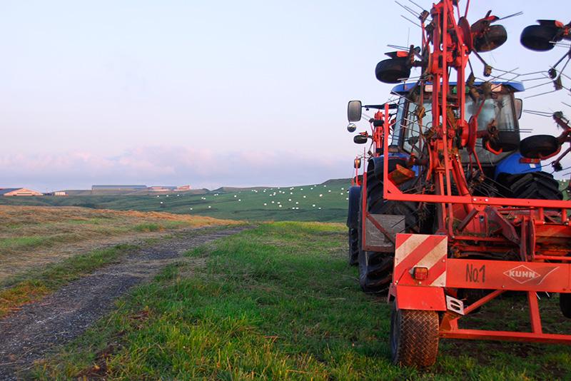 宗谷岬牧場の高台