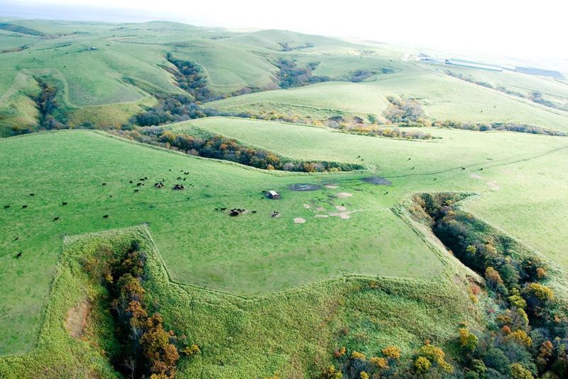 日本最北の牧場である宗谷岬牧場
