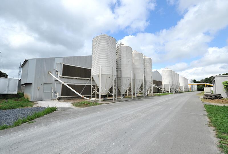 倉持産業の養鶏場の外観