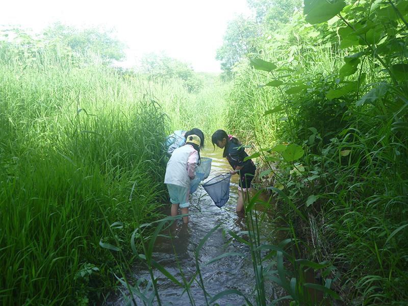 川で遊ぶ子どもたち