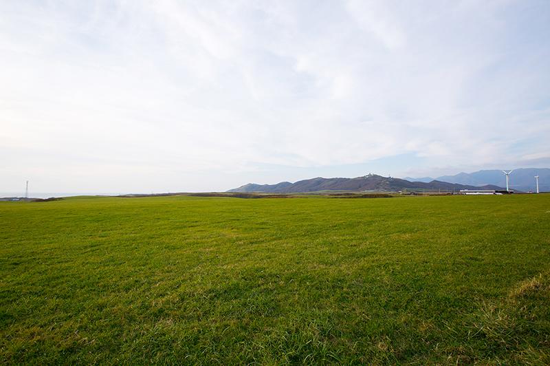 広大な高橋ファームの牧場