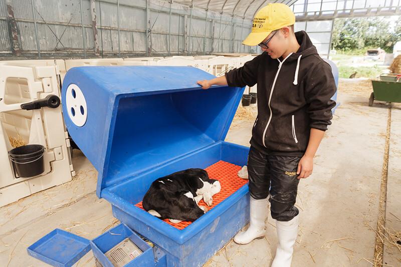 藤井牧場のスタッフと箱に入った牛