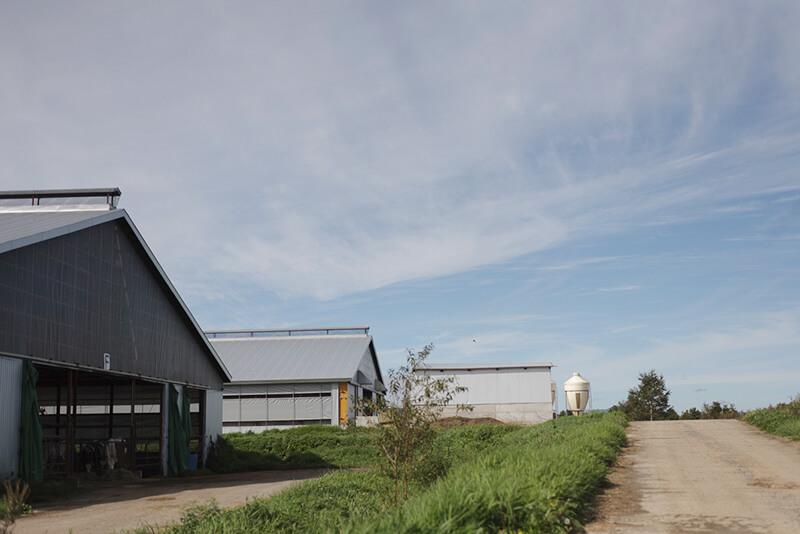 藤井牧場の外観