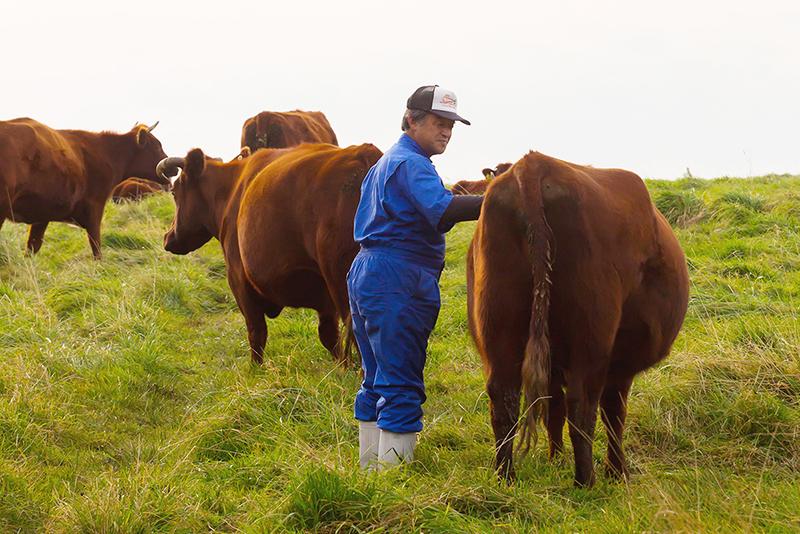 高橋ファームの高橋さんと牛