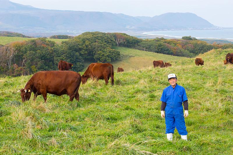 高橋ファームの牛たちと高橋さん
