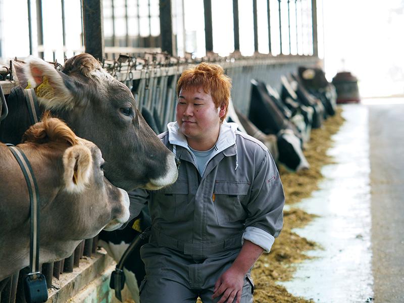 竹下牧場で働く齋藤聡さん