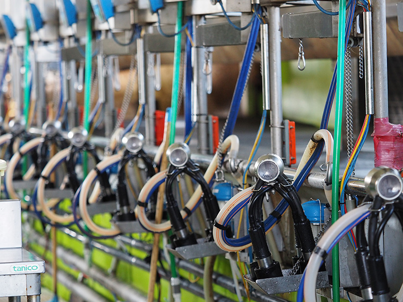 竹下牧場の搾乳器