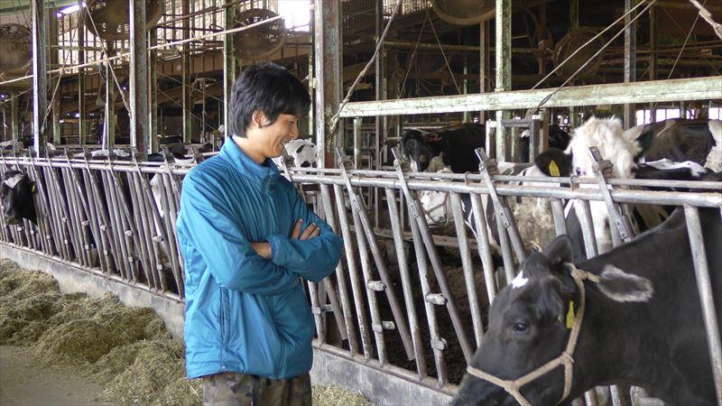 牛たちを見つめる廣澤さん