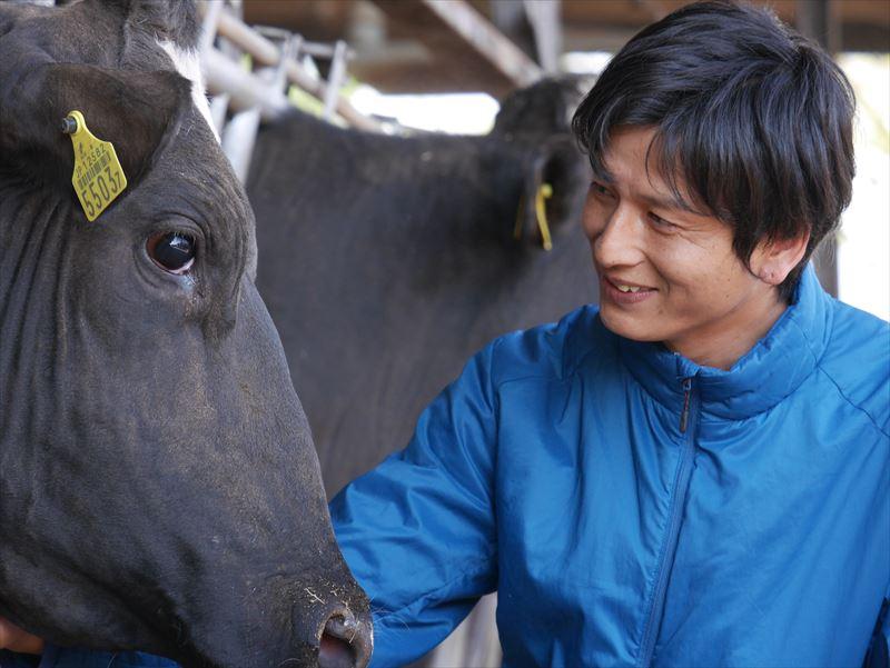 牛と戯れる廣澤さん