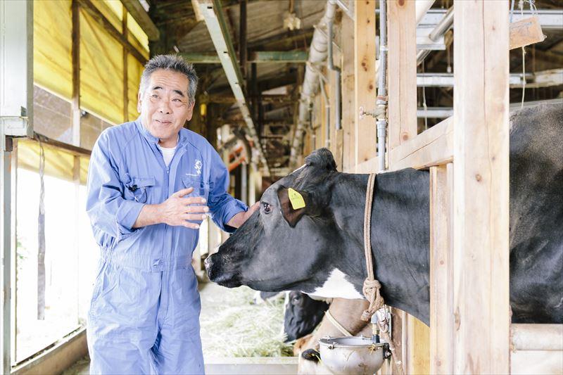 牛の世話をする佐野さん