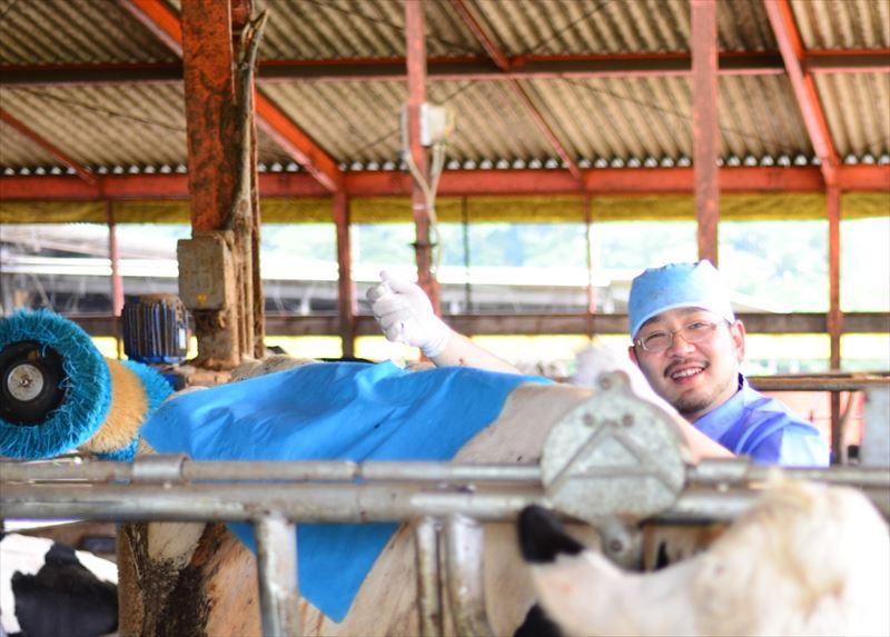牛舎の牛と原田先生