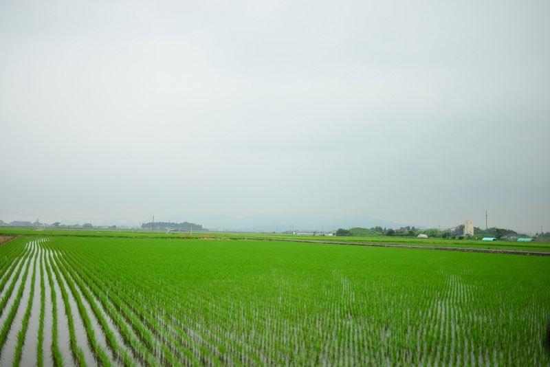 栃木県の田園風景