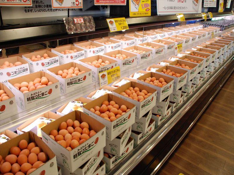 たまご庵の店内に並ぶ卵