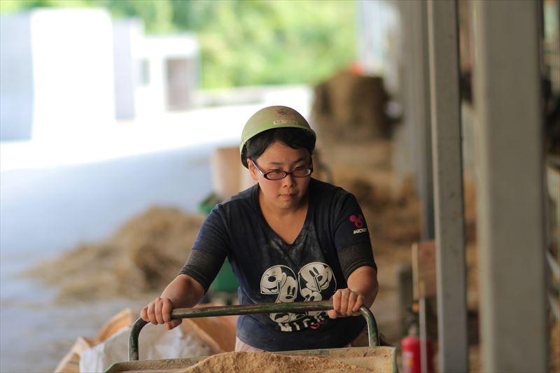 うしちゃんファーム餌を運ぶ女性従業員