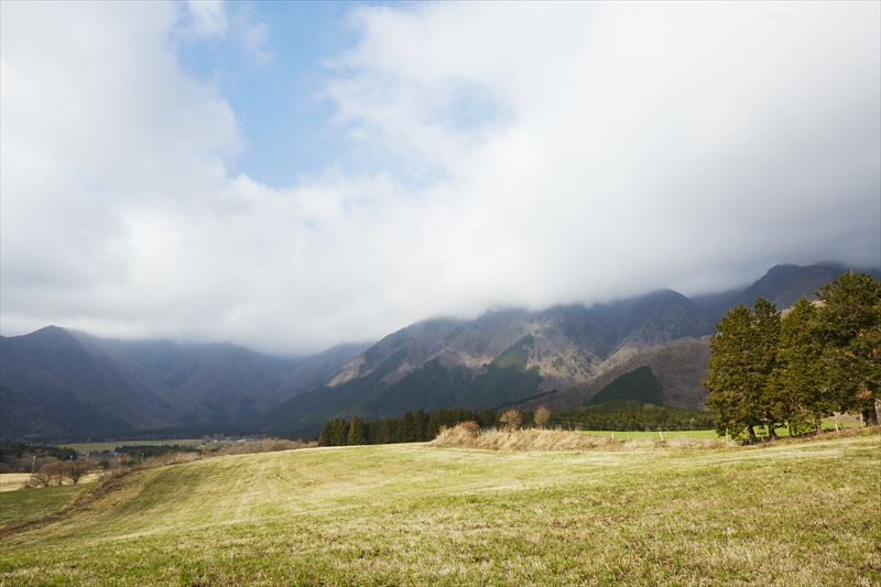 12月の朝霧高原