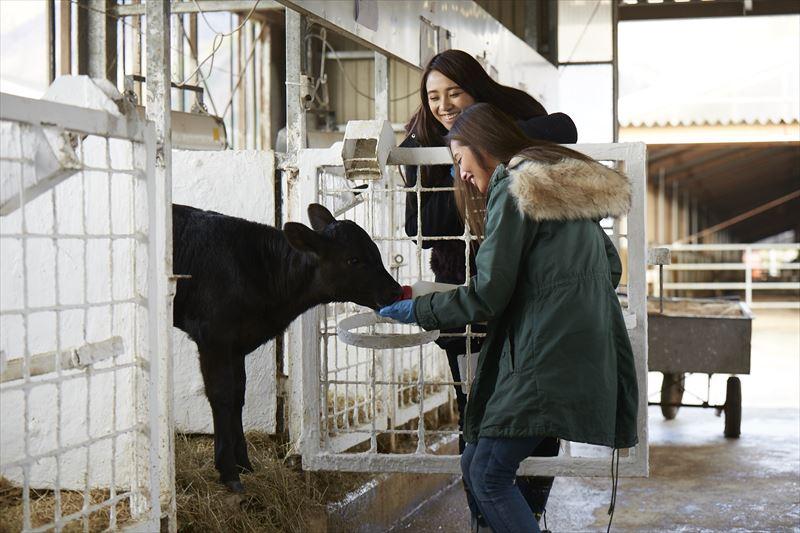 子牛にミルクをあげる島野ミキさんとガルちゃん