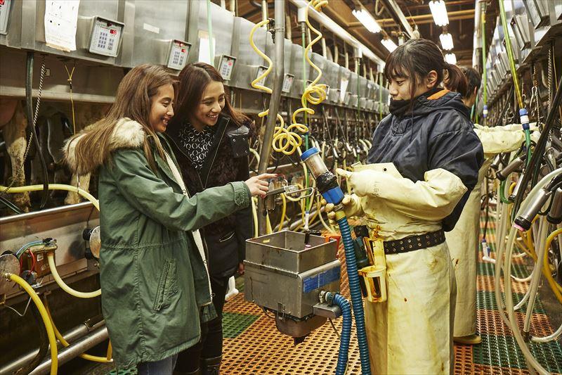 ミルキングパーラーで説明を聞く島野ミキさんとガルちゃん