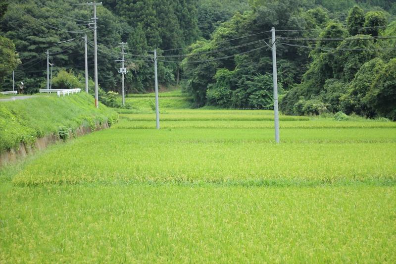 福島県会津地方