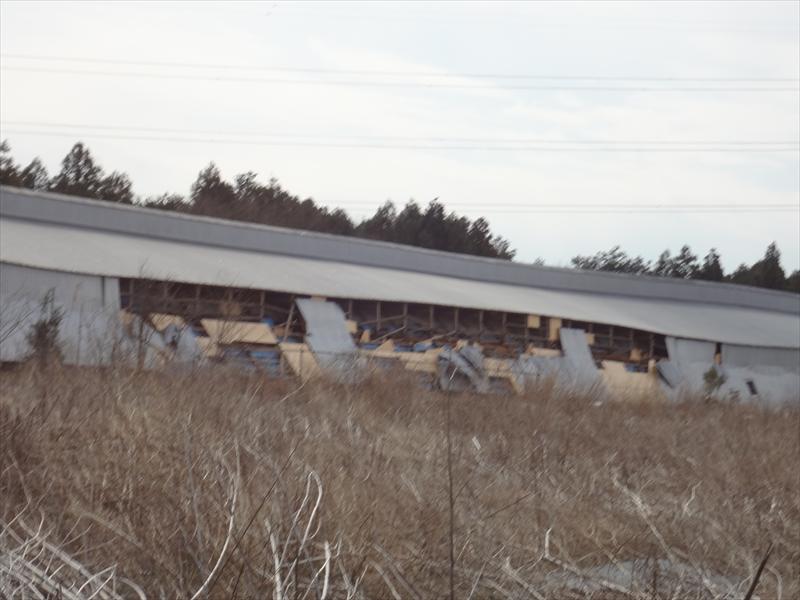震災の被害を受けた養鶏場