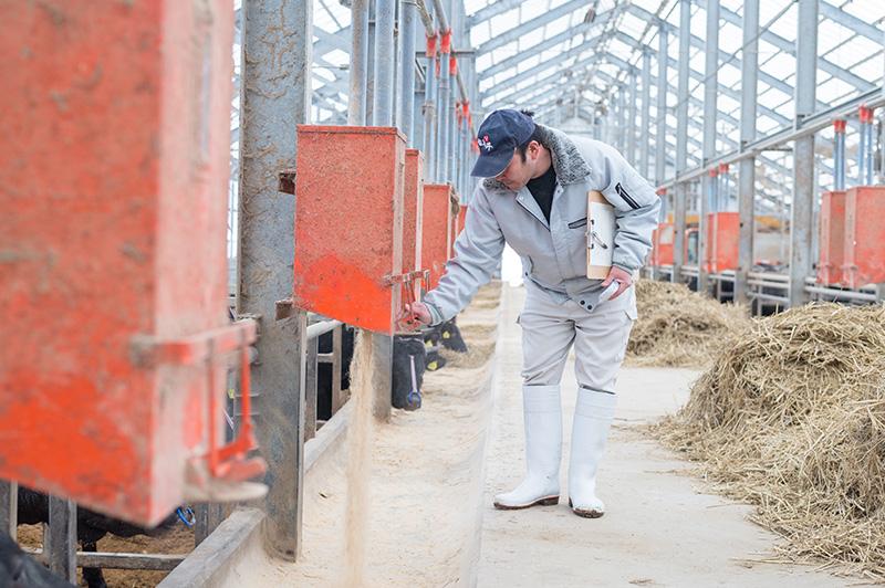 福島の肥育業者特製のエサ