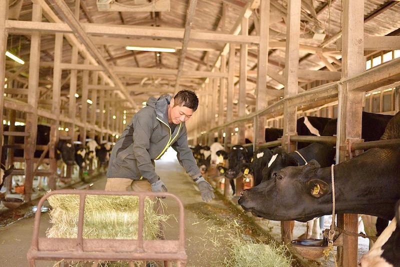 木名瀬牧場の牛舎